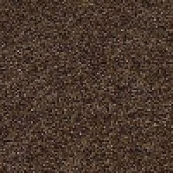 8269 Dark Brown+