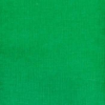 Green 22+