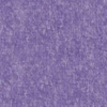 Violet+2 955 грн.
